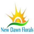 New Dawn Florals